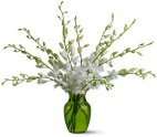 Serenity Orchids Vase